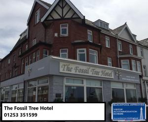 Fossil Tree Hotel